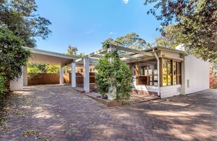 Picture of 19 Lindsay Terrace, Belair SA 5052
