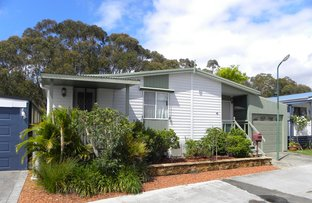 Picture of 81/157 The Springs Rd, Sussex Inlet NSW 2540