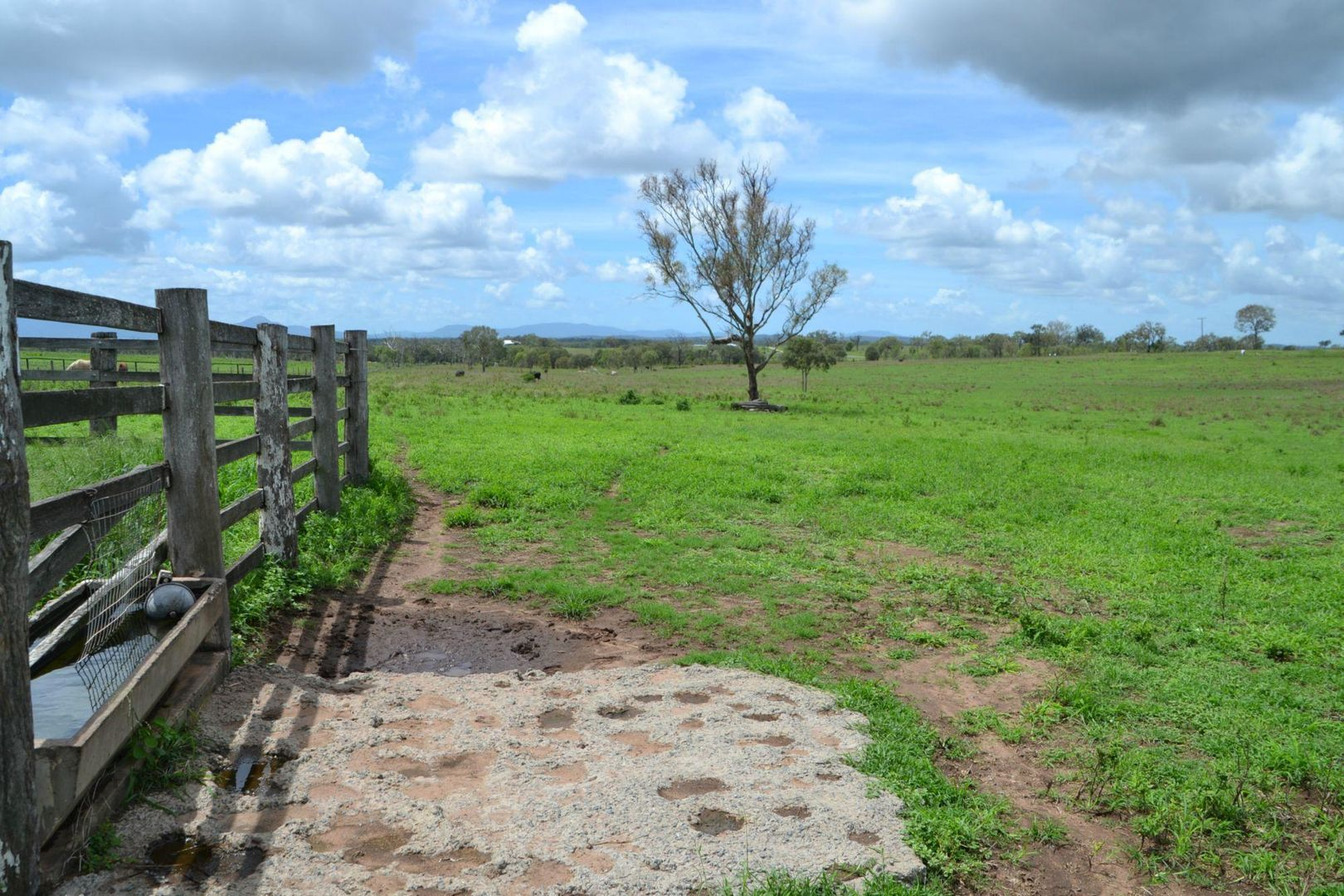 178 Mcevoy Road, Kabra QLD 4702, Image 1