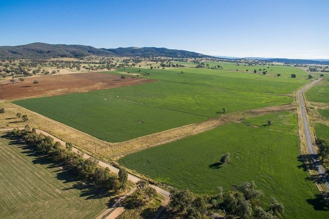 Picture of 1085 Wallabadah Road, QUIRINDI NSW 2343
