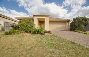 Picture of 13 Pencarrow Crescent, Raceview QLD 4305