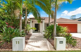 Picture of 11 Paynters Pocket Ave, Palmwoods QLD 4555