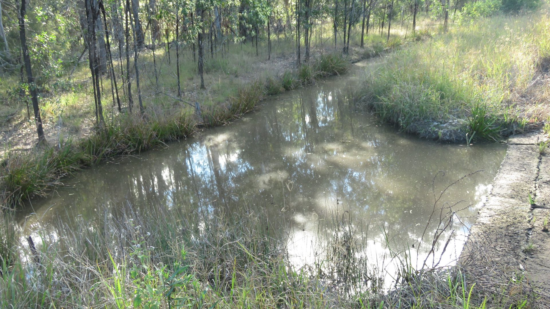 Lot 2 Clearfield Road, Myrtle creek via, Casino NSW 2470, Image 1