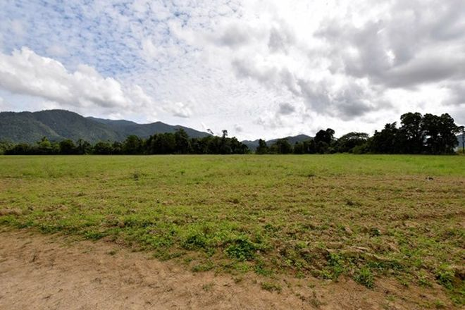 Picture of L4 Midgenoo Feluga Road, FELUGA QLD 4854