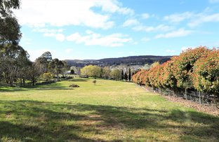 Picture of 44-46 Queen Street, Bombala NSW 2632