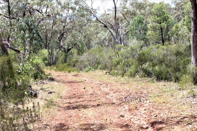 Picture of 100 High, TAMBAR SPRINGS NSW 2381