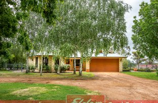Picture of 83 LESCHENAULTIA CIRCLE, Donnybrook WA 6239