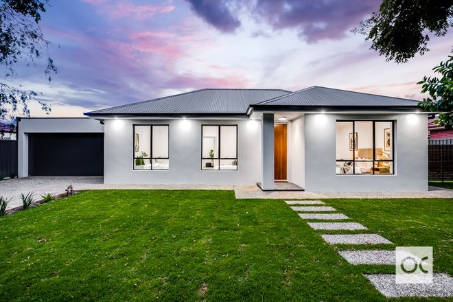 Picture of 12 Bice  Street, CLARENCE GARDENS SA 5039
