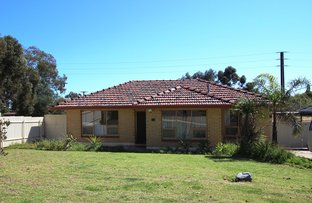 Picture of 15 Carbenet Drive, Hackham SA 5163