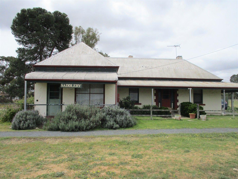 43 Railway Terrace, Peake SA 5301, Image 0