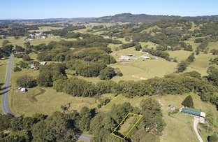 Picture of 485 Left Bank Rd, Mullumbimby NSW 2482