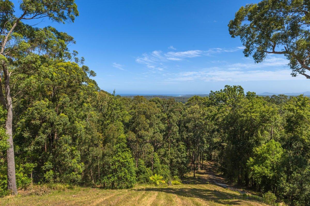 Lot 702 Bowerbird Lane, Valla NSW 2448, Image 2