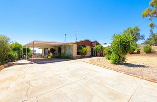 Picture of 9 Quelquelling Rd, Northam WA 6401
