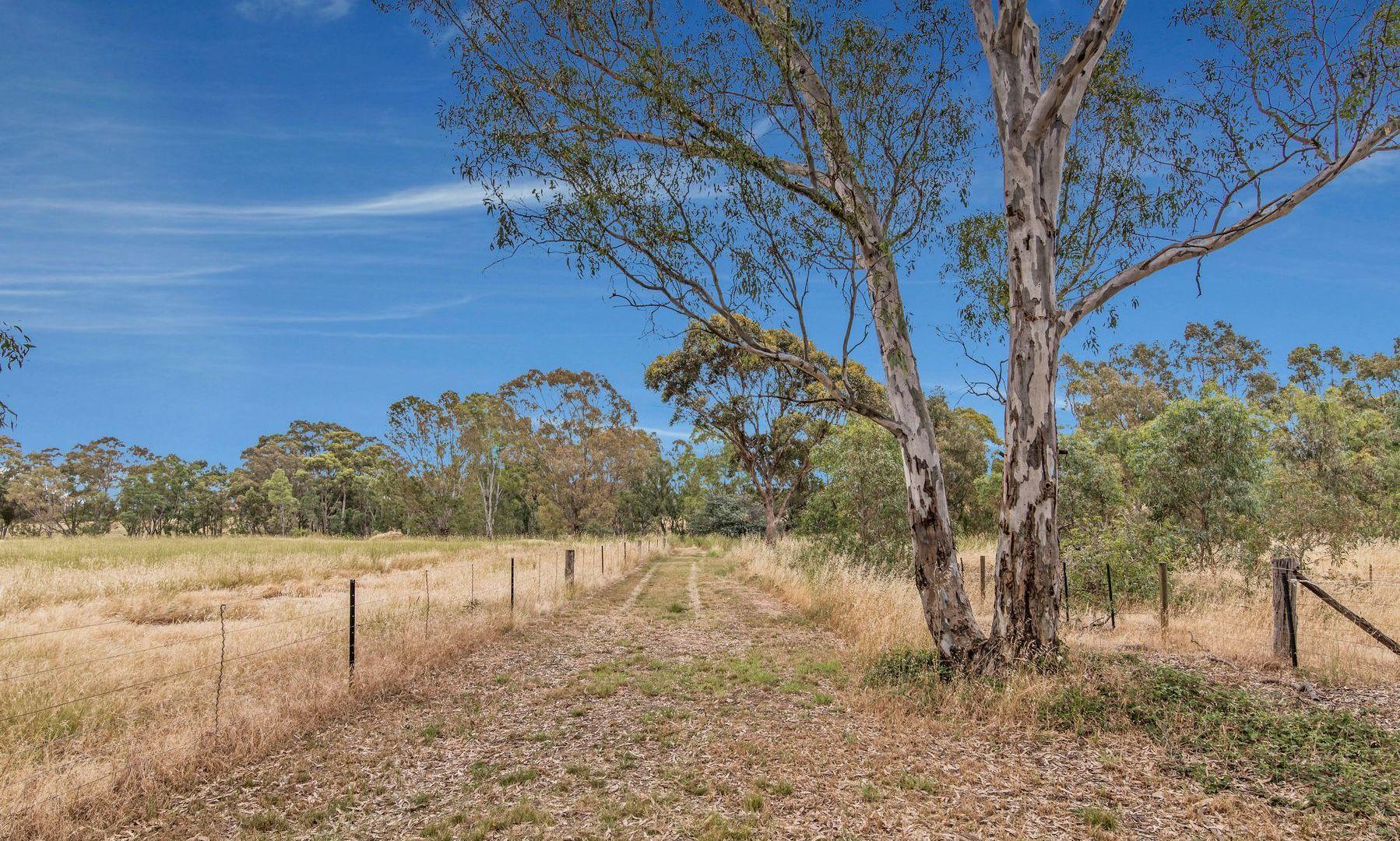 229 Red Tank Road, Emu Creek VIC 3551, Image 1