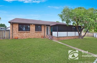 Picture of 13 Mudie Place, Blackett NSW 2770