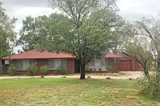 Picture of 17-19 Burns Street, HILLSTON NSW 2675