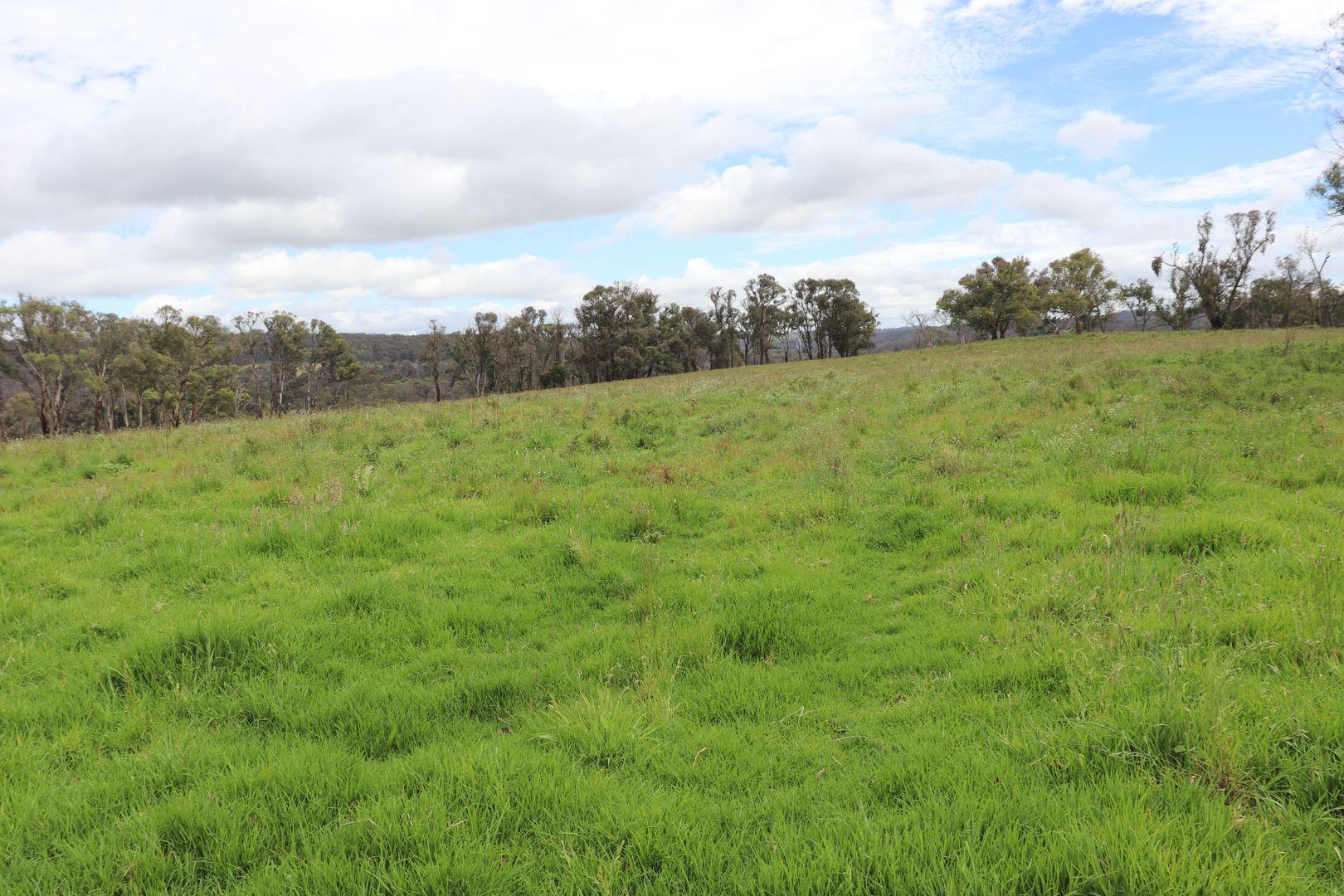 Square Range Road, Mount Mitchell NSW 2365, Image 0
