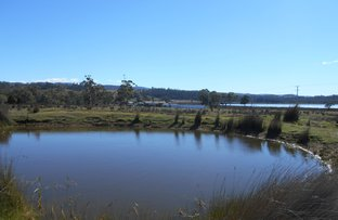 Picture of 10324 Tasman Highway, Little Swanport TAS 7190