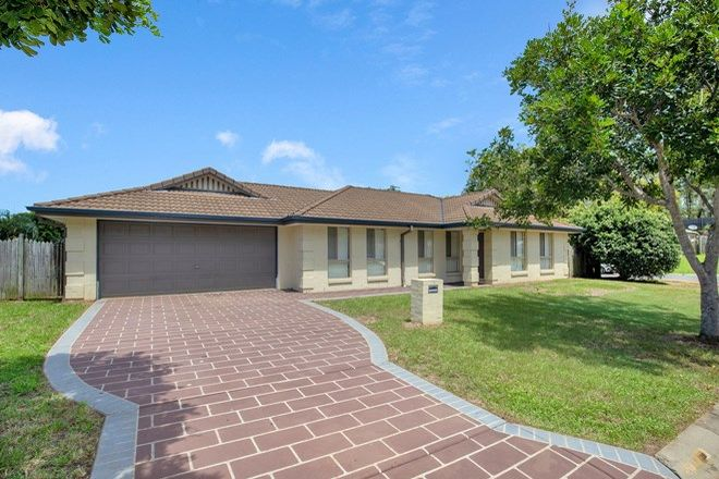 Picture of 15 Purlingbrook Street, UPPER COOMERA QLD 4209