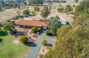 Picture of 519 Lady Augusta Road, Echuca VIC 3564