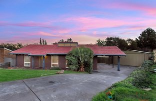 Picture of 6 Pelican Court, Modbury Heights SA 5092