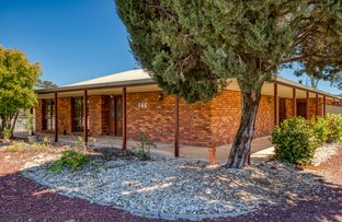 Picture of 144 Dight Street, Jindera NSW 2642