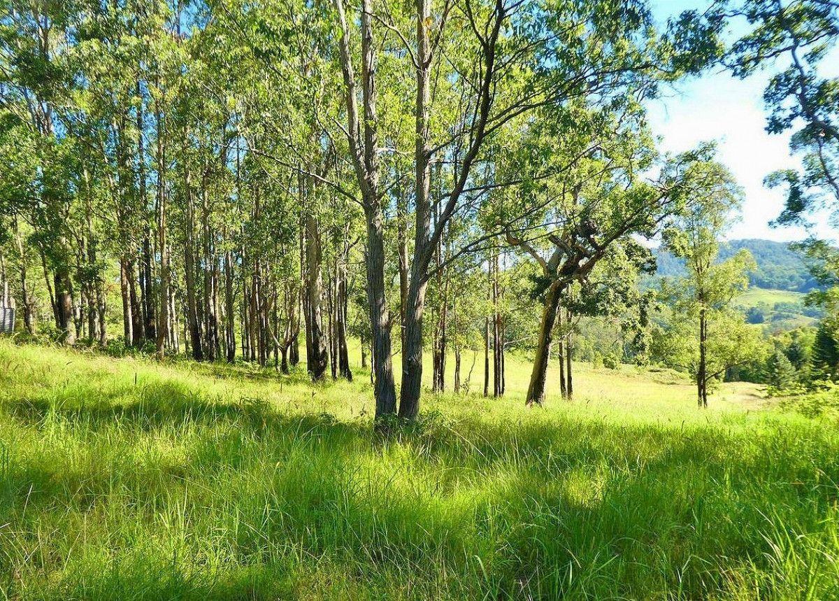 258 Smiths Creek Road, Smiths Creek NSW 2474, Image 0