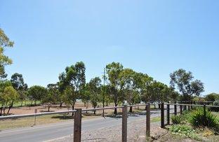 Picture of 6 Wetlands Close, Murray Bridge SA 5253