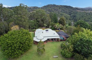 Picture of 151 Blanckensee Road, Black Mountain QLD 4563