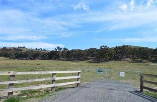 Lot 7 Mulwaree St, Tarago NSW 2580
