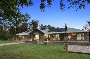 Picture of 73 Jackeroo Court, Jimboomba QLD 4280