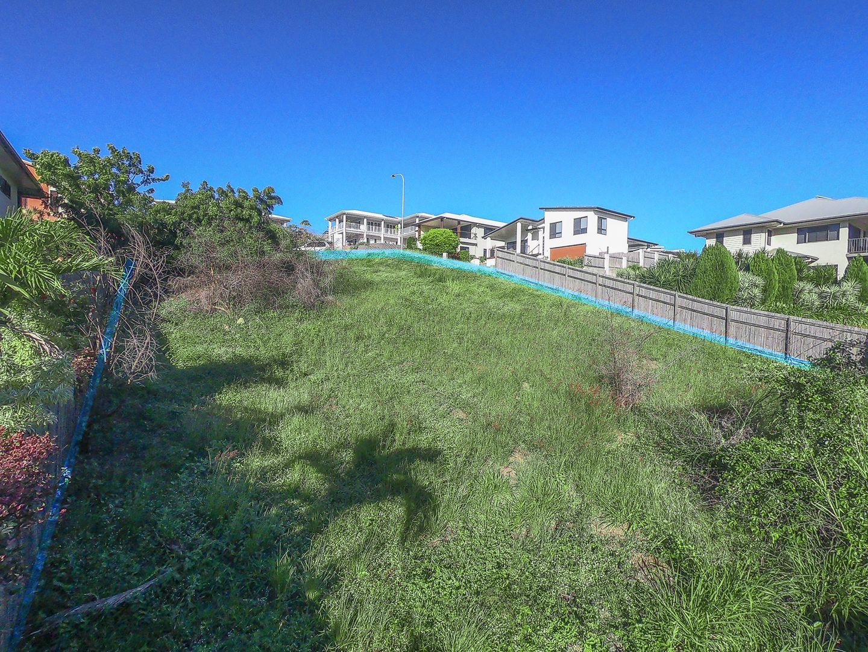 16 Palomar Court, Mount Louisa QLD 4814, Image 1