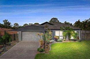 Picture of 8 Mustang Place, Upper Coomera QLD 4209