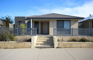 Picture of 287 Benenden Ave, Alkimos WA 6038