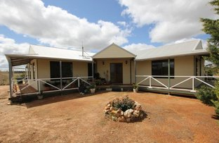 197 South-West Ardath Road, Ardath WA 6419