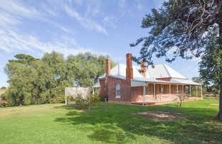 Picture of 172 Jasprizza Lane, Young NSW 2594