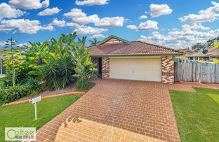 Picture of 3 Brookvale Place, Bracken Ridge QLD 4017