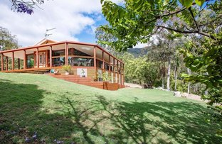 Picture of 10 German Road, Sarina QLD 4737