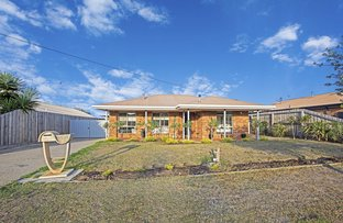 Picture of 14 Sandalwood Court, Grovedale VIC 3216
