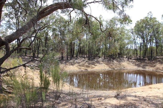 Picture of 677 Brooks Road, BINNAWAY NSW 2395
