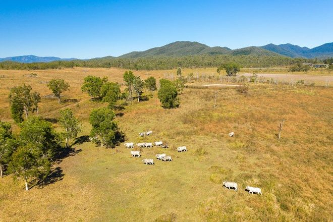Picture of Lot 1 Silver Creek Road, SILVER CREEK QLD 4800