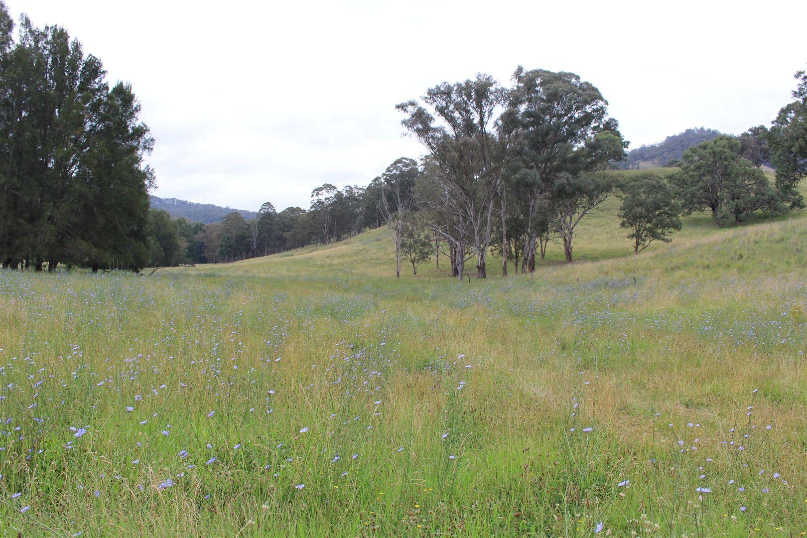 . Crawney Road, Crawney NSW 2338, Image 2