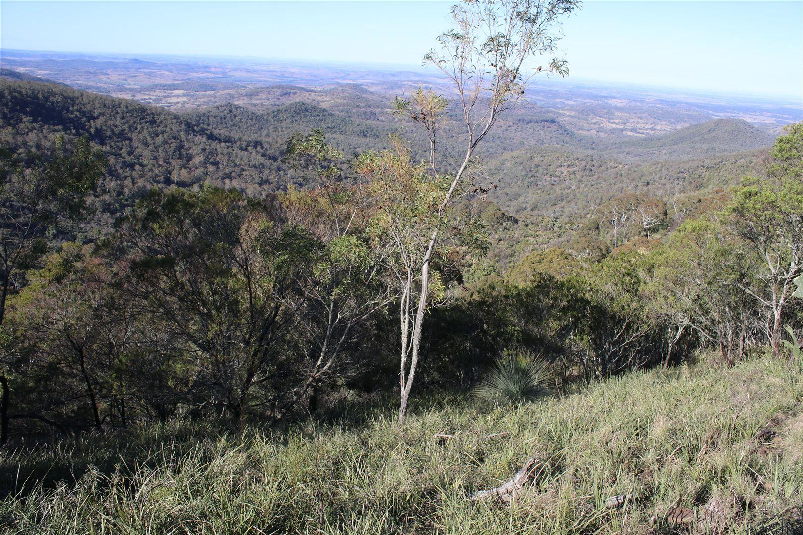 Bunya Mountains QLD 4405, Image 0