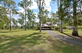 54-56 Five Oak Green Court, Jimboomba QLD 4280