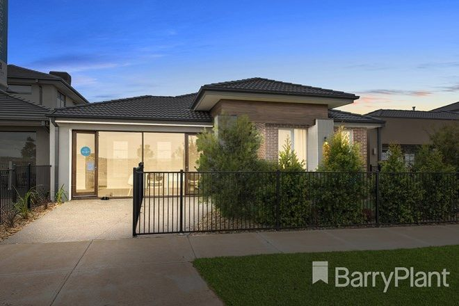 Picture of 13 Elvire Street, TARNEIT VIC 3029