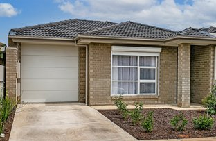 Picture of 18A Maple Avenue, Royal Park SA 5014