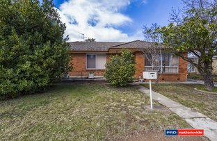 Picture of 8 Donald Road, Queanbeyan NSW 2620