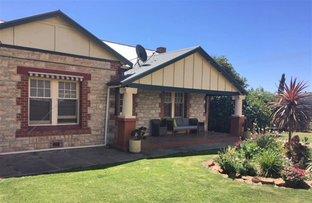 Picture of 34 Bruce Terrace, Cummins SA 5631
