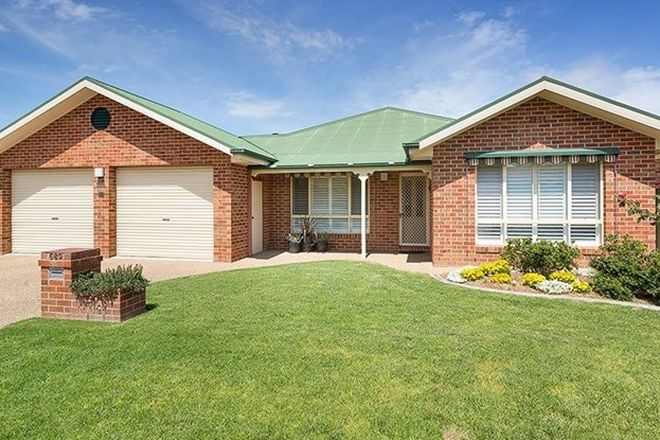 Picture of 589 Daly Street, LAVINGTON NSW 2641