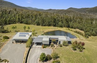 Picture of 285 South Cathedral Lane, Buxton VIC 3711